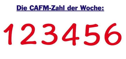 Die CAFM-Zahl der Woche ist dieses Mal die 123456, eines der unsichersten Passwörter in der IT-Welt.