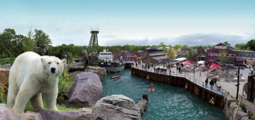 Nur der Eisbär ist nicht im System: Auch Felsen, Schiff und Wasser-Bassin von Yukon Bay verwaltet der Erlebniszoo Hannover jetzt mit IMSWARE und IMSWARE.GO!