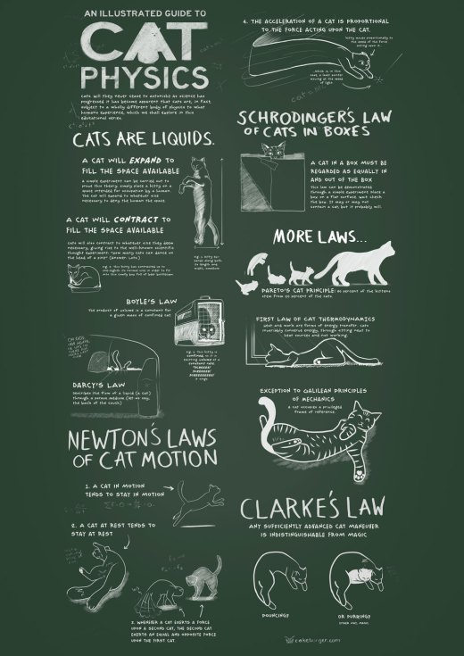 cat-physics-print-web