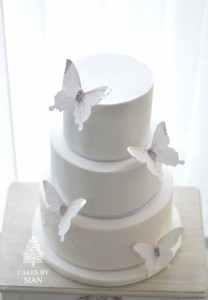 Mauve Butterfly wedding Cake