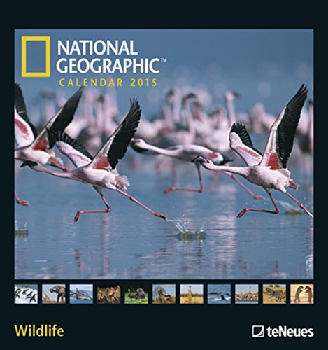 national-geographic-calendar-2015