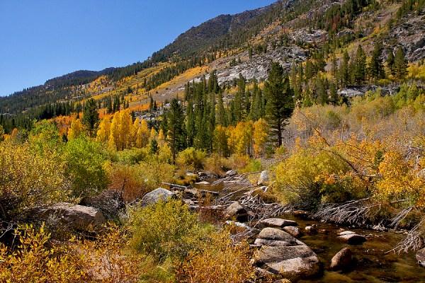 S Fork Bishop Creek (9/26/14) Steve Wolfe