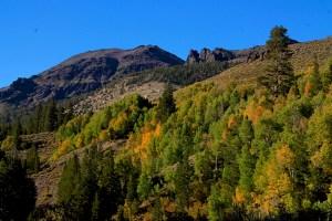 Sonora Pass (9/16/14) Robin Roberts