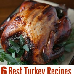 6 best turkey recipes