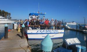 fishing 15 024