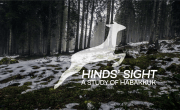 hinds sight (720)