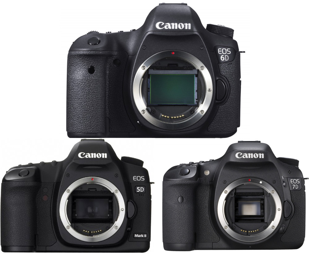 Sterling Here Is A Full Specifications Comparison Canon Canon Eos Mark Ii Camera News At Cameraegg Canon 70d Vs 7d Price Canon 70d Vs 7d Mark Ii dpreview Canon 70d Vs 7d