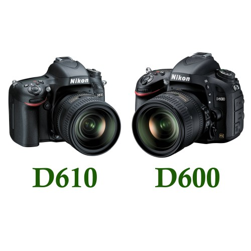 Medium Crop Of D610 Vs D750