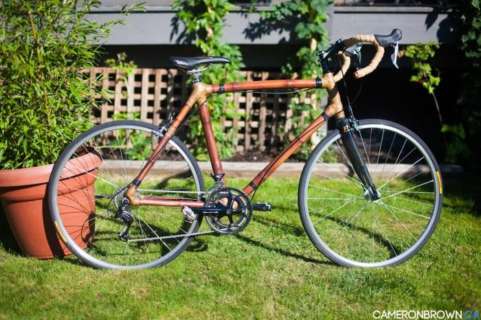 Bamboo Bike-9