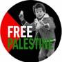 Free Palestine (boy)