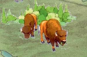 Buffalo in Wood Buffalo National Park