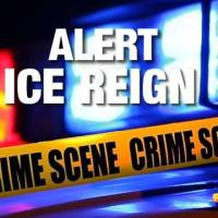 Fourteen Arrested in Operation ICE Reign