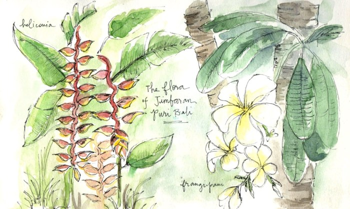 Travel sketches of Bali flowers