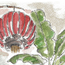 Southeast Asia travel sketches