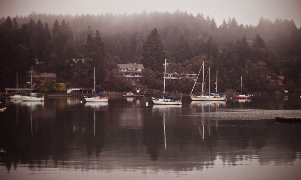 One last look at Salt Spring Island.