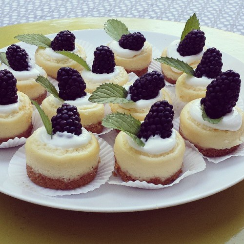 blackberry cheesecake 2