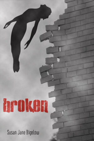 Broken-web-cover