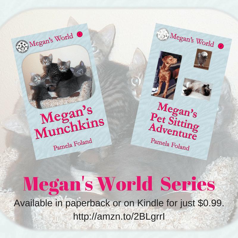 Meet Pamela Foland, author of the Megan's World series
