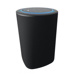 VAUX Portable Speaker for Echo Dot #Giveaway Ends 12/25