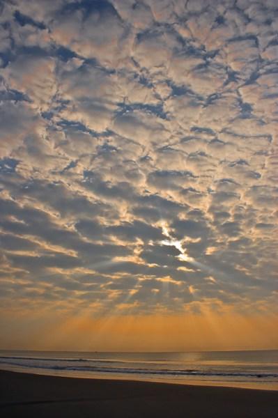 SC Sunrise