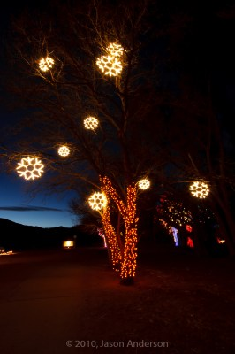 Christmas Lights at Chatfield 5