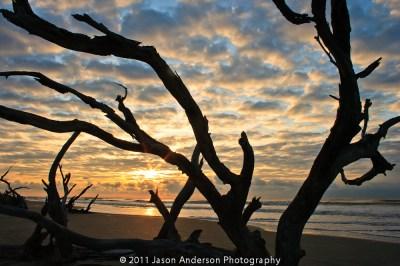 Bull Island Sunrise, SC