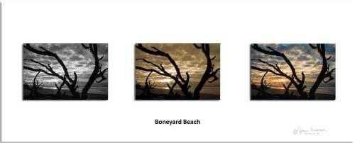SC Boneyard