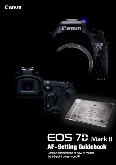 how to set canon 7d to auto