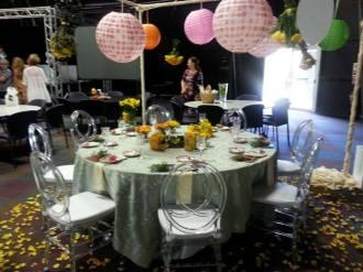 CANSA uThungulu Tea Party Nov2014 03