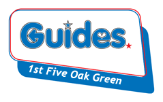 1st-Guides-TR