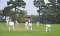 Capel cricket club