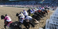 2015 Breeders' Cup – 10-29-2015 Free Pick & Horse Race Handicapping Lines Preview