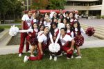 Notre Dame vs. Stanford – 11-28-2015 Free Pick & CFB Handicapping Lines Preview