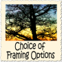 choice-framing-options