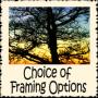 choice-framing-options