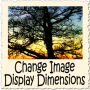 image-display-dimensions