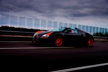 Vitesse_WRC_12