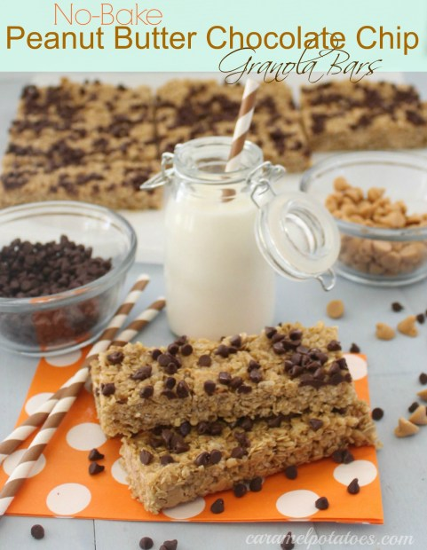 No-Bake Peanut Butter Pretzel Chocolate Chip Granola Bars Recipe ...