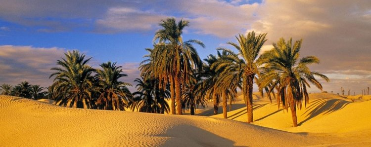 Tunisia Travel