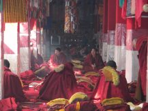 Monks at Drepung Monastery