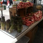 Asparagus & Rhubarb at NYC Green Market