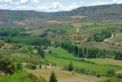 Brihuega - Valle del Tajuña