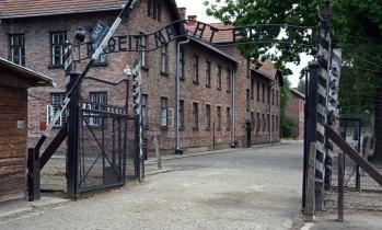 """Auschwitz I. Entrada del Campo de Concentración. """"El trabajo os hará libres"""""""