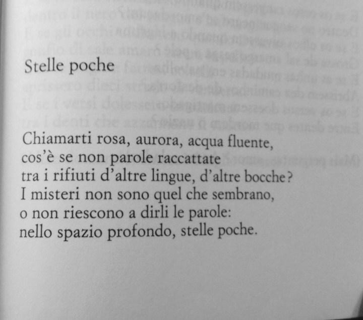 poesia saramago
