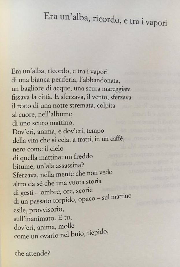 giancarlo-pontiggia