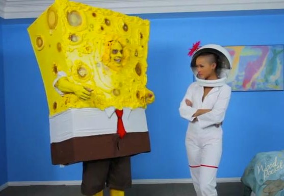 spongeknobsquarenuts