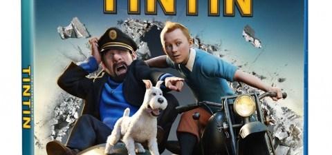 Tintin-Combo-box-art