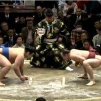 Takanoyama vs. Chiyonokuni