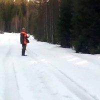 Bärenangriff in Schweden