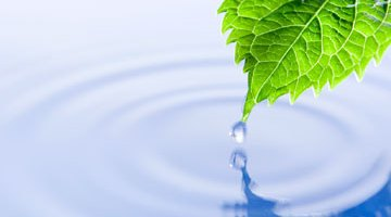 environmental, eco-friendly, water, green, reuse